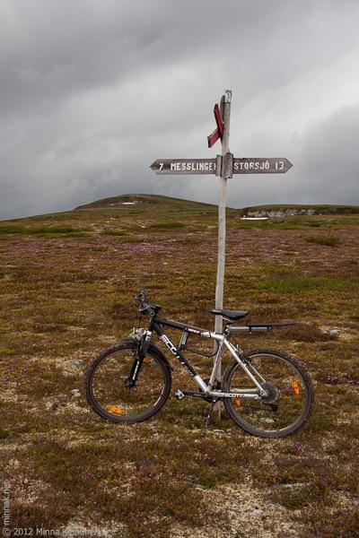 Mountainbike where it belongs - the mountain