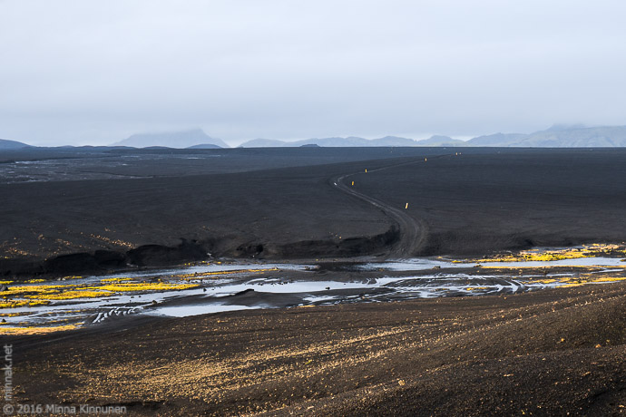 Road over the lava fields with one of the countless creeks that need to be forded